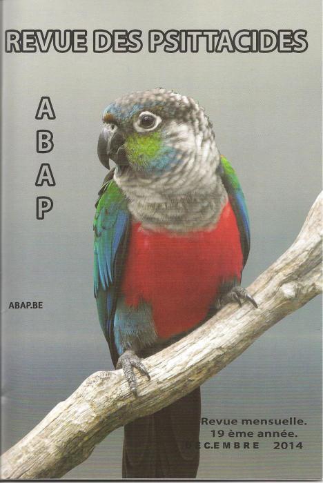 ABAP.BE